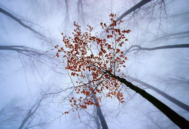 up-1000_aleksander_cufar_fd-jesenice_web