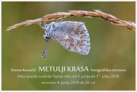 Kovacic_Opatje selo-3